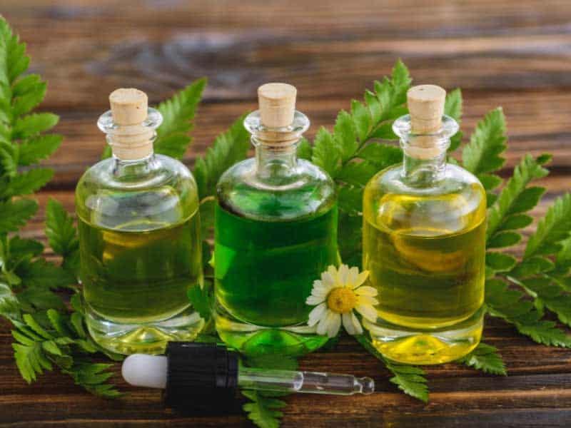 мигрена лечение с билки